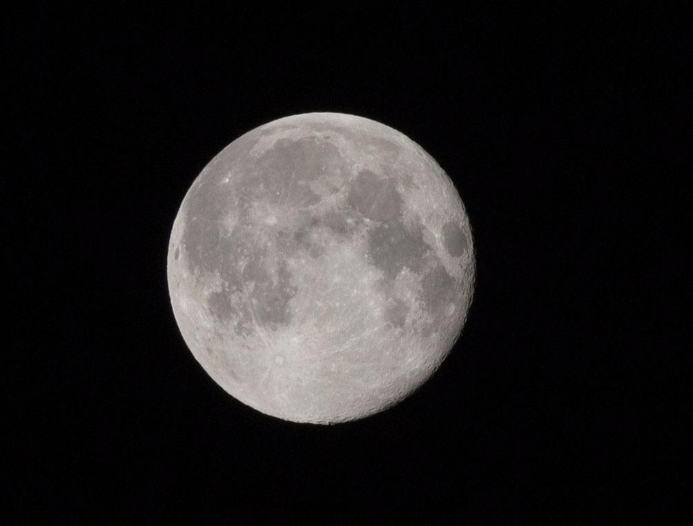 Full Moon by Anne Dokter